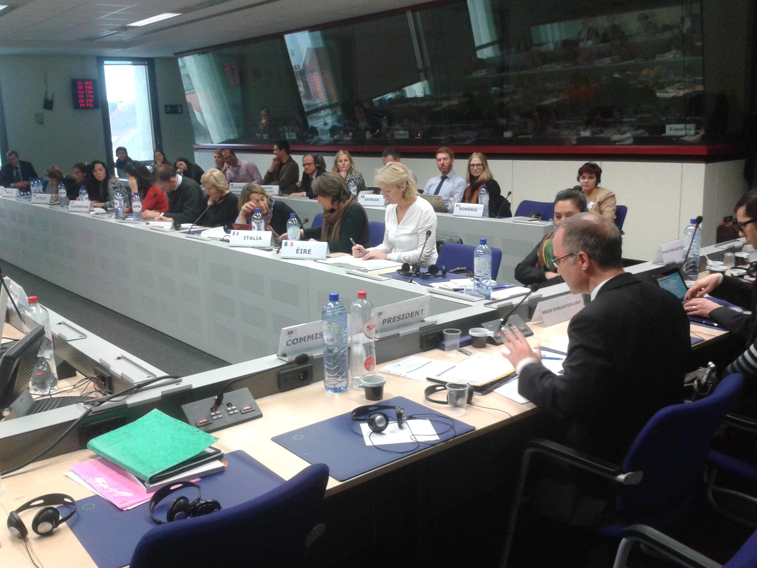 DG Regional and Urban Policy, Evaluation Network Meeting January 2015